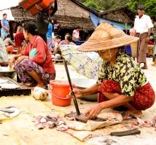 แม่ค้ารับจ้างชำแหละปลาริม ณ ตลาดปลาตะบอเส็ก, หาดตะบอเส็ก, ประเทศเมียนมา